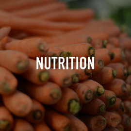 06_Nutrition